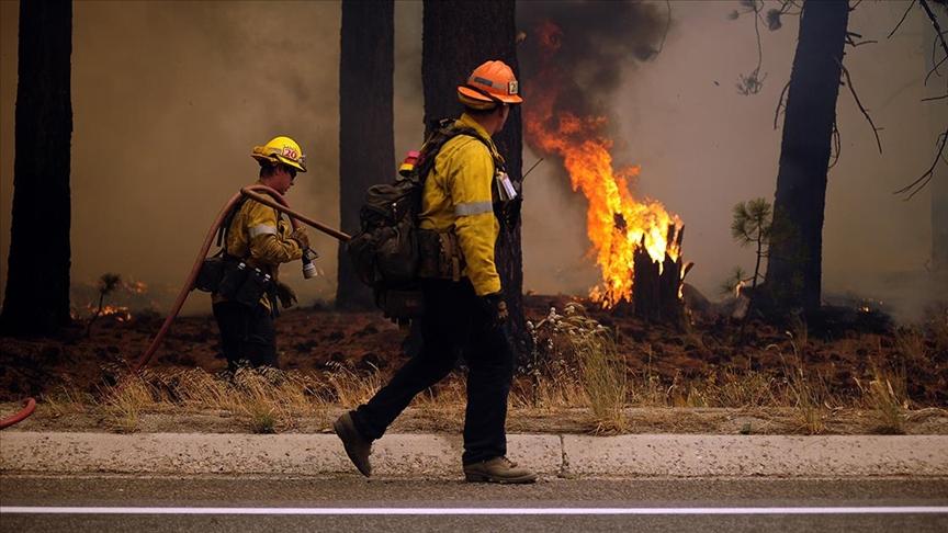 California'da orman yangını otoyola sıçradı