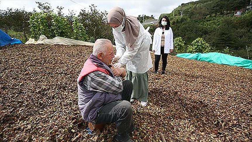 'Kovid-19 savaşçıları' aşı hizmetini fındık bahçesinde vatandaşların ayağına götürüyor