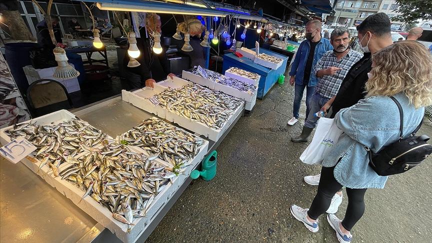 Trabzonlu balıkçıların yüzünü bol miktarda avlanan istavrit güldürdü