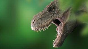 Araştırmaya göre dünyada 2,5 milyar T-rex dinozor türü yaşamış olduğu tahmin ediliyor