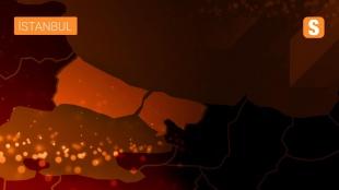 Avrupa Gençler Güreş Şampiyonası'nda Muhammed Hamza Bakır finale yükseldi