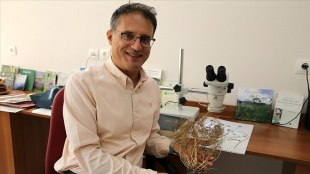 Bilim insanlarının ısrarlı araştırması endemik bitkiyi herbaryuma kazandırdı