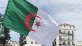 Cezayir: Paris Büyükelçimizin görevine dönmesi için, Fransa'nın egemenliğimize saygı duyması şa