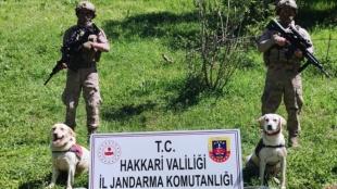 Hakkari'de terör örgütü PKK'ya yönelik operasyonda silah, patlayıcı ve mühimmat ele geçiri