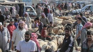 İdlib'de yerlerinden edilen siviller yoksulluk ve pahalılığın gölgesinde Kurban Bayramı'na