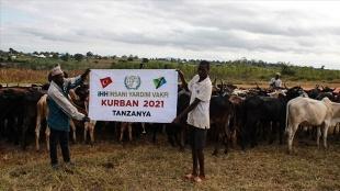 İHH, Tanzanya'da 200 büyükbaş kurban kesimi yaptı