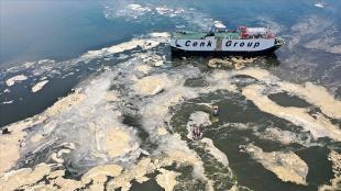 İzmit Körfezi'nde müsilaj temizleme çalışmaları sürüyor