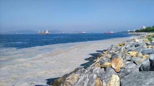 Marmara Denizi'nin müsilajdan kurtarılması için 'acil eylem planı'nın uygulanması öne