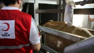 Türk Kızılay, Kuzey Makedonya'da ihtiyaç sahiplerine kurban eti ulaştırıyor
