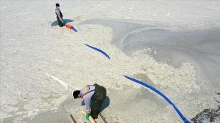 Yalova'da müsilaj temizlik çalışması devam ediyor
