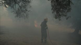 Yunanistan'da yüz binlerce dönümlük alanı küle çeviren yangın sürüyor